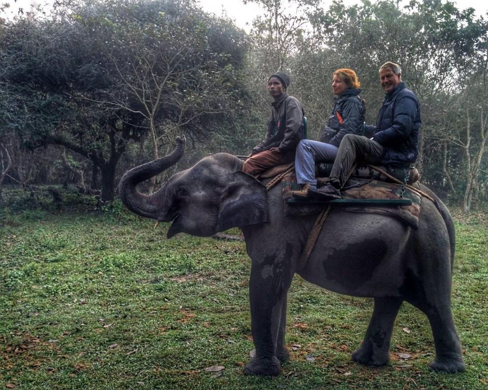 Early Morning Elephant Ride