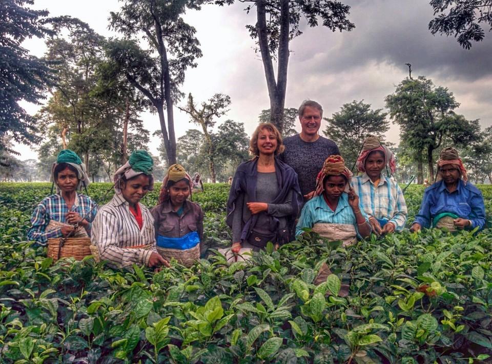 At an Assamese Tea Plantation