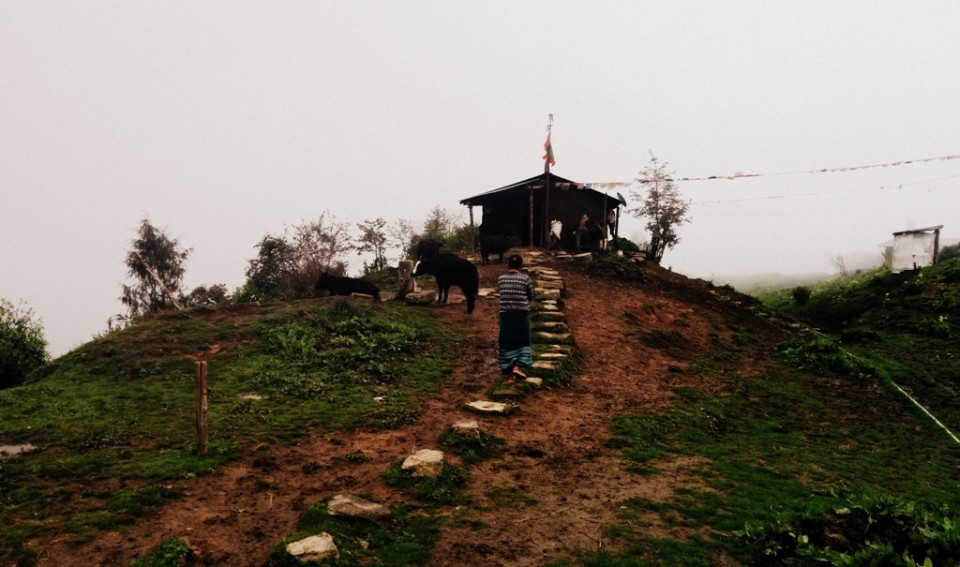 Sangey Norbu's Hut in 4-Kilo