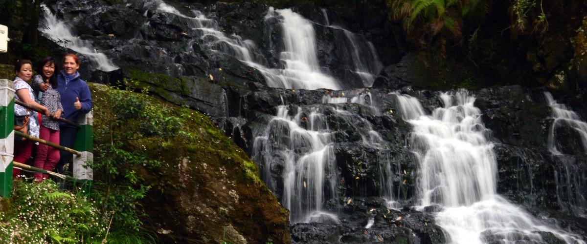 Meghalaya - Nature's Bounty