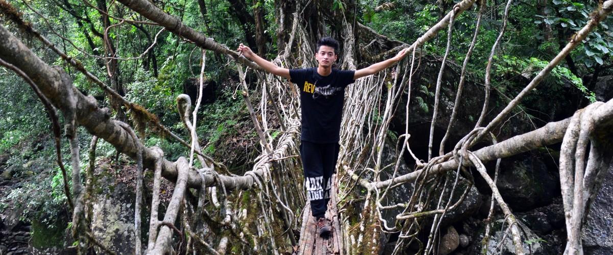 Meghalaya - Wildlife