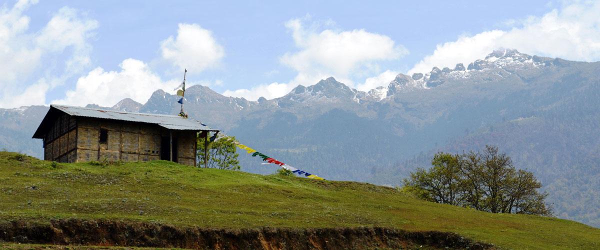 Arunachal Pradesh - Wildlife