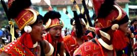 Nagaland Tour and Hornbill festival
