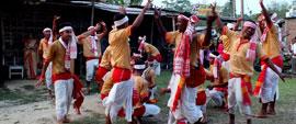 Wild Life Assam Nagaland Tour