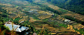 Nagaland Tours North East India