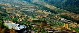 Nagaland Tours North East India
